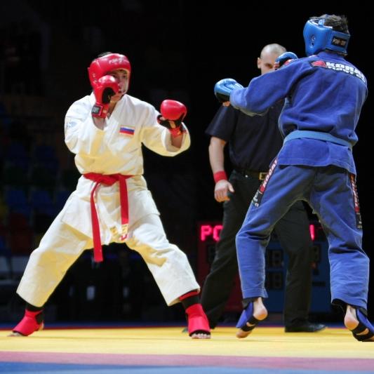 Орловские рукопашники выиграли 11 золотых медалей на домашнем КО