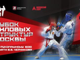 Кубок силовых структур по рукопашному бою памяти Черникова